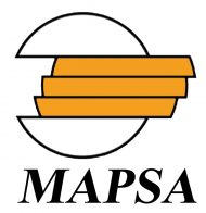 Mapsa, Website